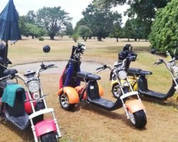 Venture Golf Trikes in action