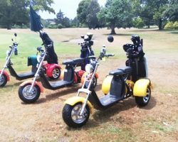 Venture Golf Trikes enjoying the sun